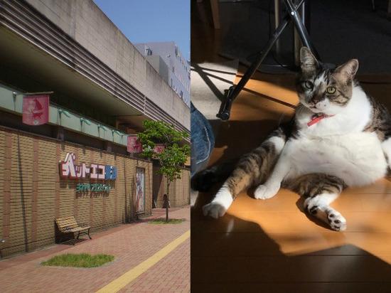 12月10日タイトル.jpg