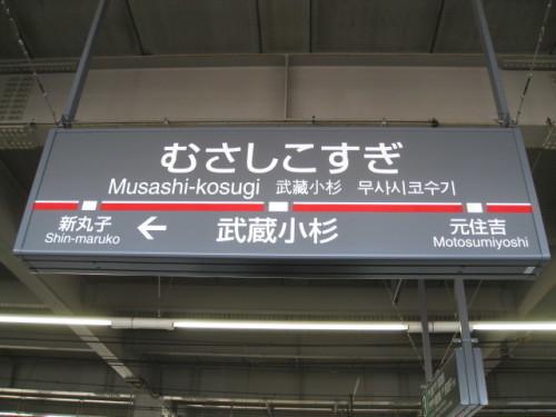 小杉21.jpg