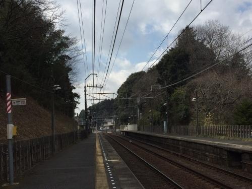 成田詣2017-50.jpg