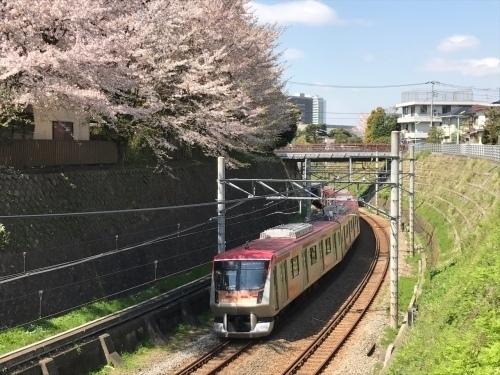 桜雄0413-07.jpg