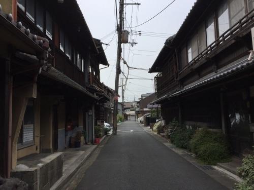 橋本03.jpg