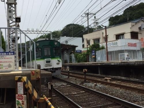 橋本04.jpg