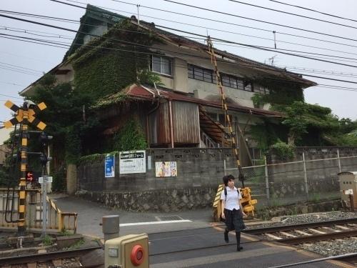 橋本05.jpg