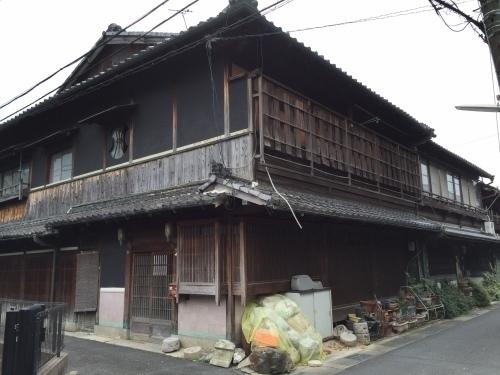 橋本11.jpg