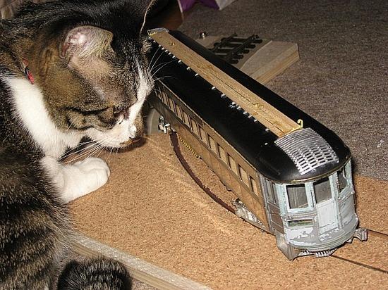 猫にインタアーバン05R.jpg