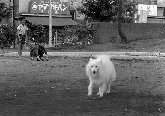 s37公園02R.jpg