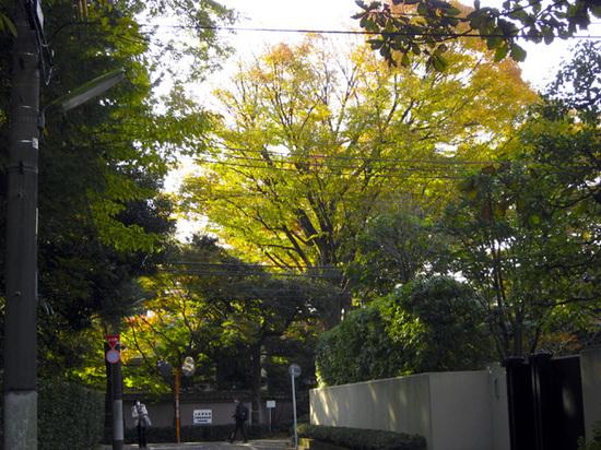 11-28五島美術館05.jpg