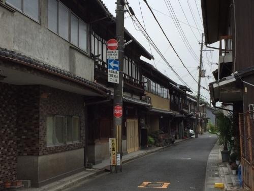 橋本09.jpg