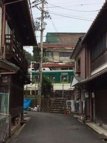 橋本14.jpg