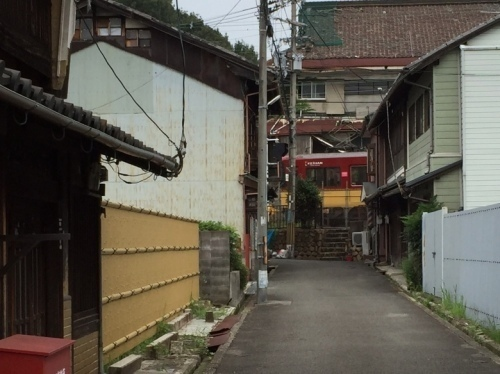 橋本15.jpg