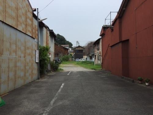 橋本19.jpg