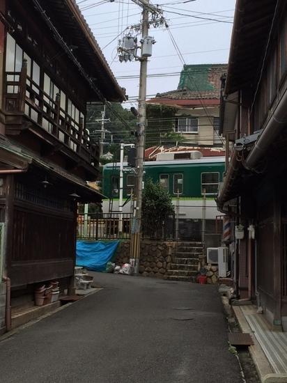 橋本23.jpg