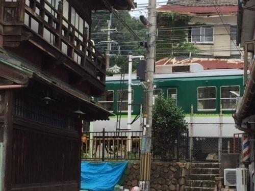 橋本24.jpg