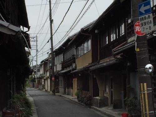 橋本25.jpg