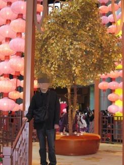 香港2010春節06.jpg